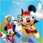 Caminhada pra Toda Família e Disney Magic Run