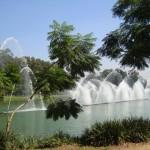 Parque Ibirapuera foi um dos lugares mais fotografados no Instagram