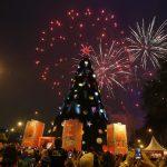 Árvore de Natal do Ibirapuera será inaugurada em 26 de novembro