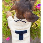 main_item_cece-cord-travels-with-tiger-on-taigan-varsity-doggie-sweater-your-choice-of-letter