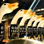 Confraria cervejeira feminina abre em SP