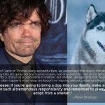 """Ator de """"Game of Thrones"""" se une a PETA para fazer um pedido aos fãs da série"""