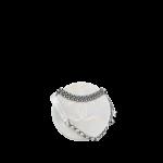 Chanel-Silver-Iridescent-Lizard-Evening-Bag