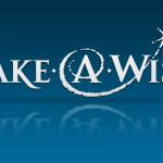 Make-A-Wish realiza 9º leilão online para continuar a realizar sonhos de crianças