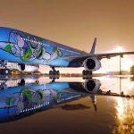 """Gosta de """"Toy Story""""? China ganha voo temático para promover novo parque"""