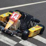 Último kart usado por Senna será leiloado