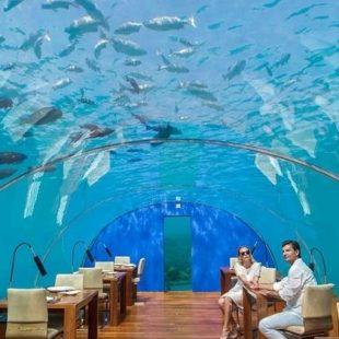 Quarto submerso é atração das Maldivas