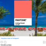 """Pantone anuncia """"Living Coral"""" como cor de 2019"""