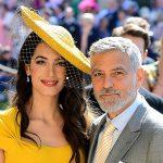 Boatos sobre separação de Amal e George Clooney