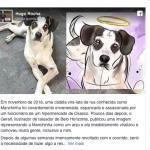 Rótulo de cerveja terá ilustração de cão que foi morto no Carrefour
