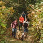 Adestrador de cães de celebridades apresenta primeiro hotel 100% pet friendly do Brasil