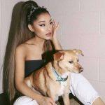 Ariana Grande aluga jatinho particular para transportar seus pets