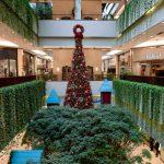Shopping Cidade Jardim traz a magia e os encantos da casa do Papai Noel, em uma decoração com mais de 150 mil lâmpadas de LED e uma árvore decorada, com mais 15 metros de altura