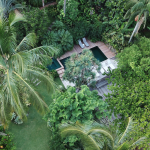O hotel TW Guaimbê anuncia aberta a temporada birdwatching, em Ilhabela