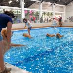 Maior parque indoor para cães da América Latina é inaugurado em SP