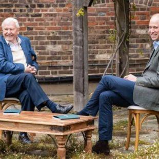 Príncipe William lança prêmio global milionário por ideias criativas pelo meio ambiente