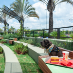 Primeira Praça de Alimentação pet friendly ao ar livre inaugura no Mooca Plaza
